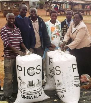 PICS Storage Bags